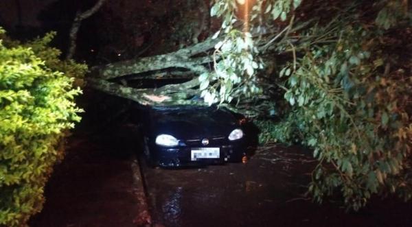 Apesar do susto, não houve feridos.. (Foto: Tarobá News)